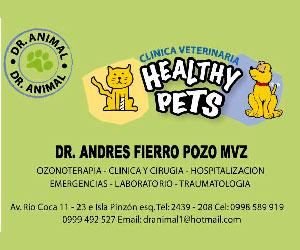 Dr. Animal